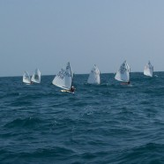 II CTO PROVINCIAL OPTIMIST:2012: GRUPO SAFAMOTOR – ACASTILLAGE Y DIFUSSION